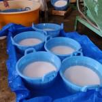 飯豊の伏流水に浸した酒米